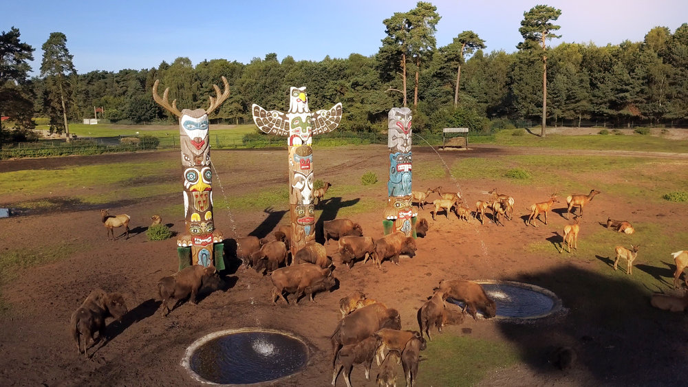 SERENGETI INTERACTIVES TOTEM <strong>| Interactive Safari experience with behavioral enrichment</strong>