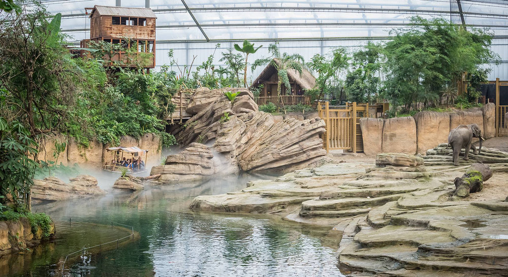 WILDLANDS JUNGOLA <strong>| Realizing a far-flung tropical world inside Europe's largest indoor rainforest</strong>