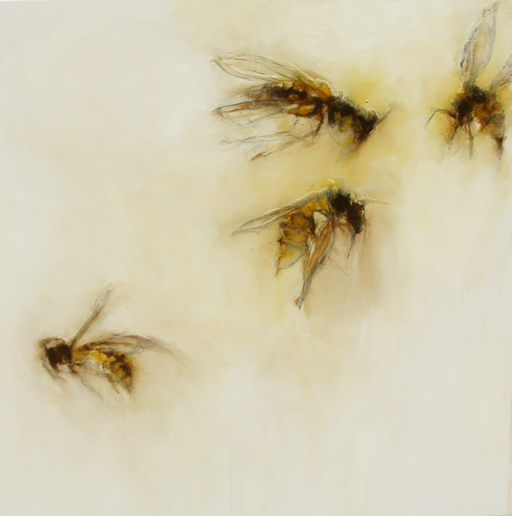 "four wasps, oil, wax, charcoal on canvas, 30x30"", 2010, SOLD"