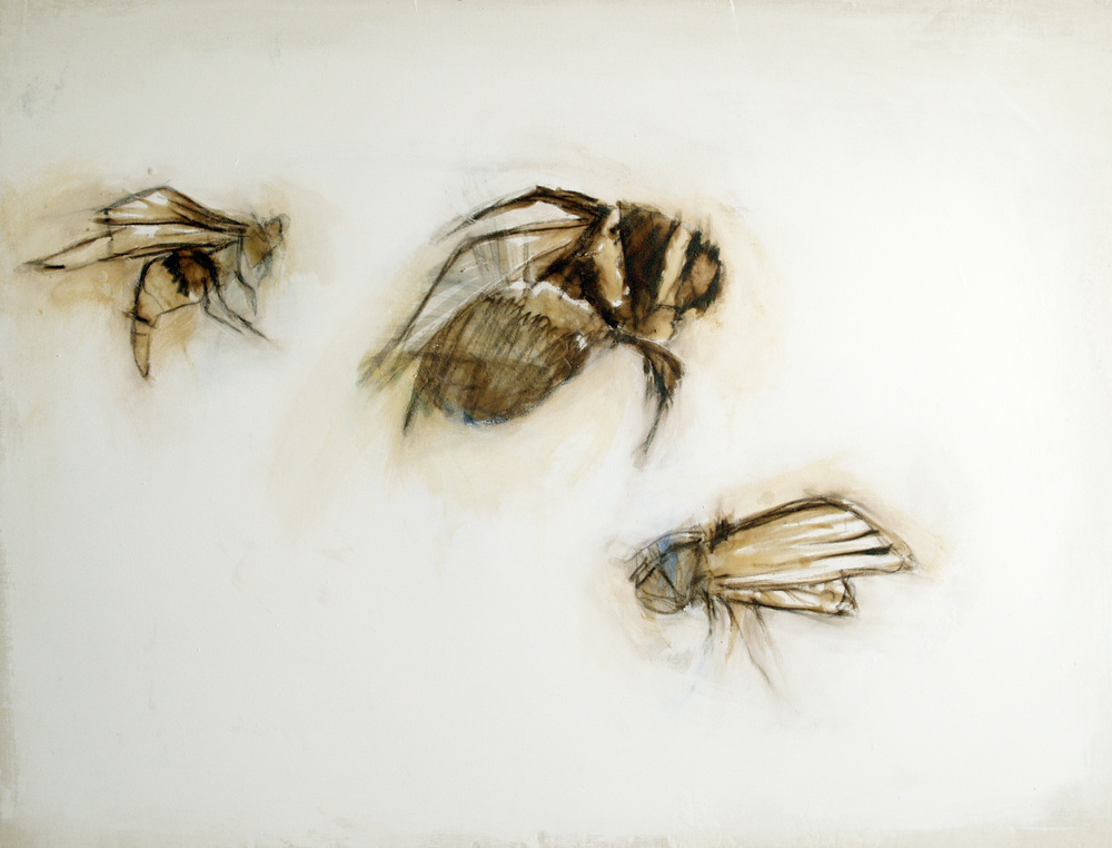 the insects that come to visit me, oil, wax, charcoal on canvas, 2009, SOLD