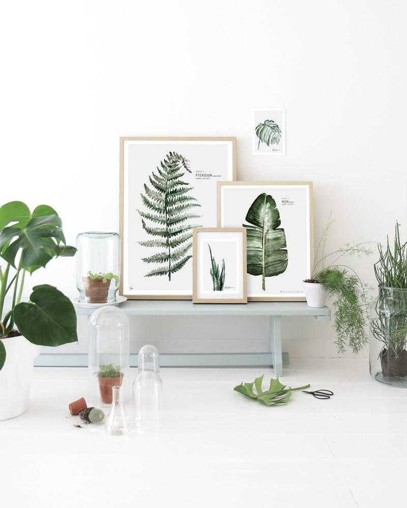 hey-yeh-botanical-beauts-4.JPG