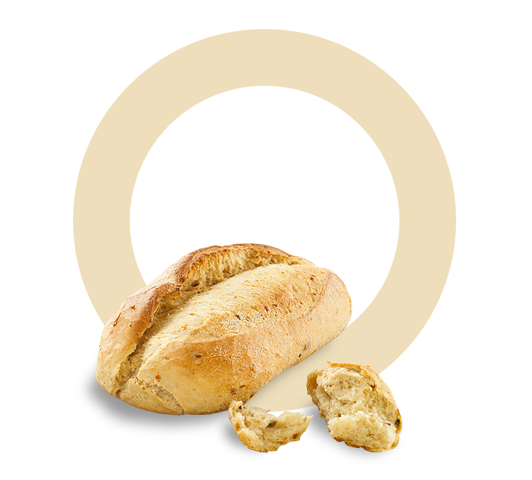 bread-rise.jpg