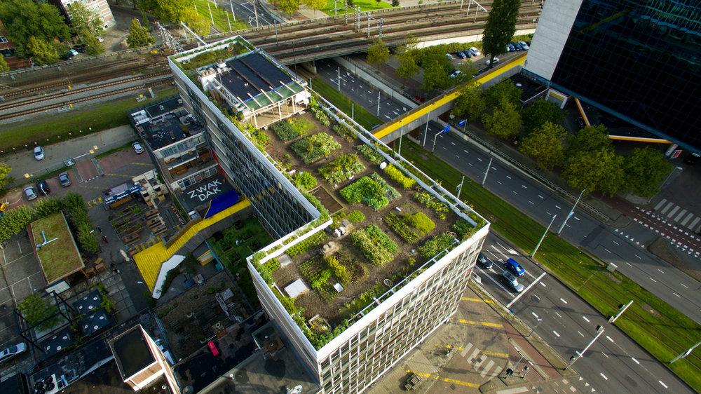 Beoogde situatie (Op het Dak, Rotterdam)