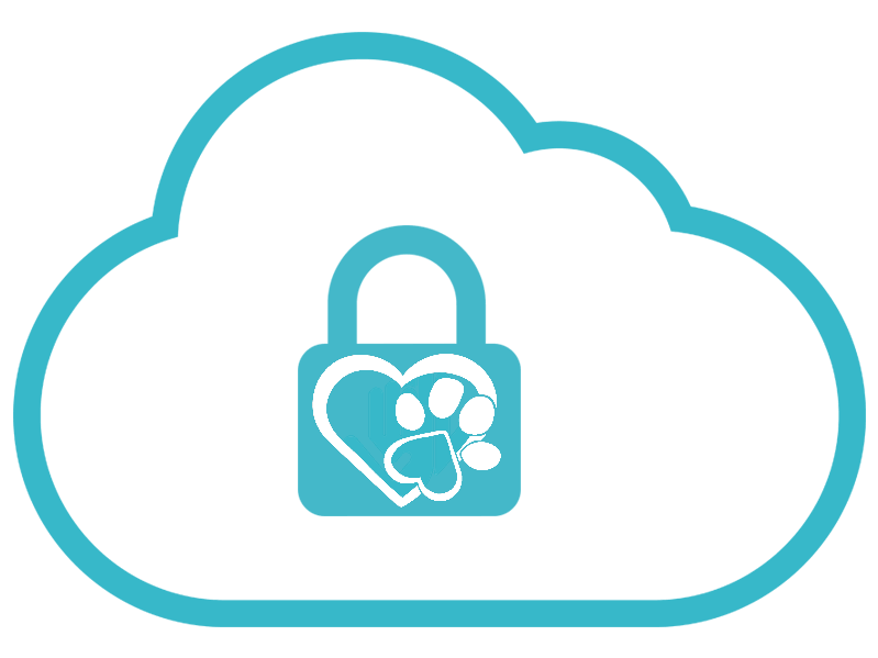 security-lock-cloud2.png