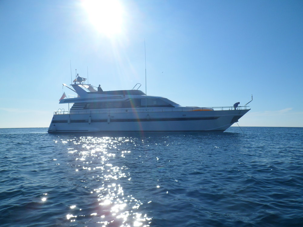 PRIVATE YACHT EXPERIENCE -