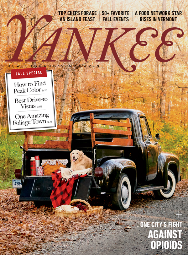 Yankee_Cover.jpg