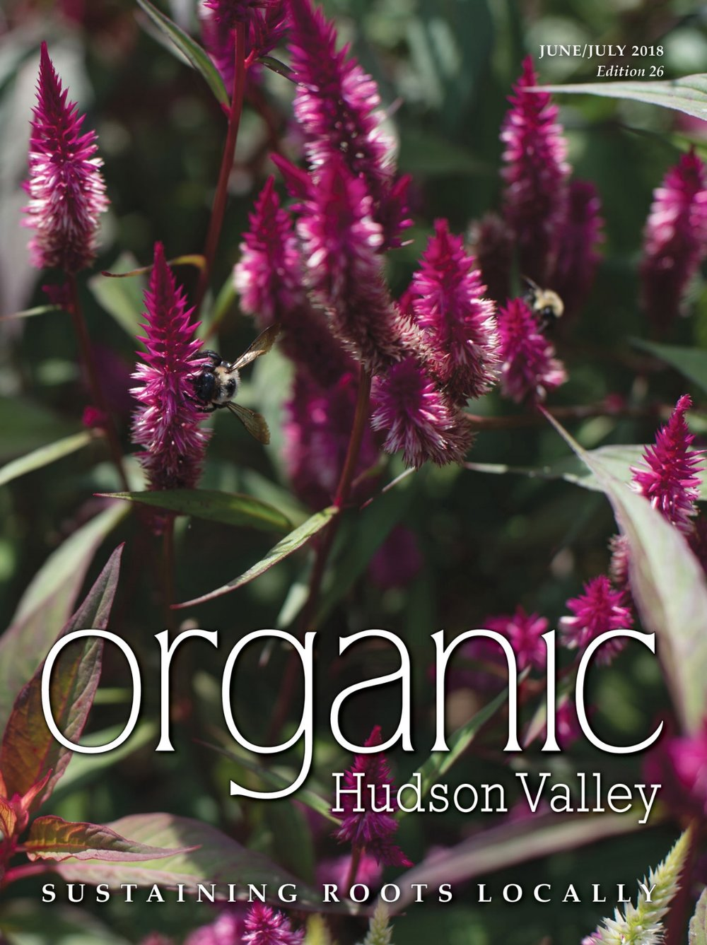 Organic Hudson Valley June/July 2018 Cover