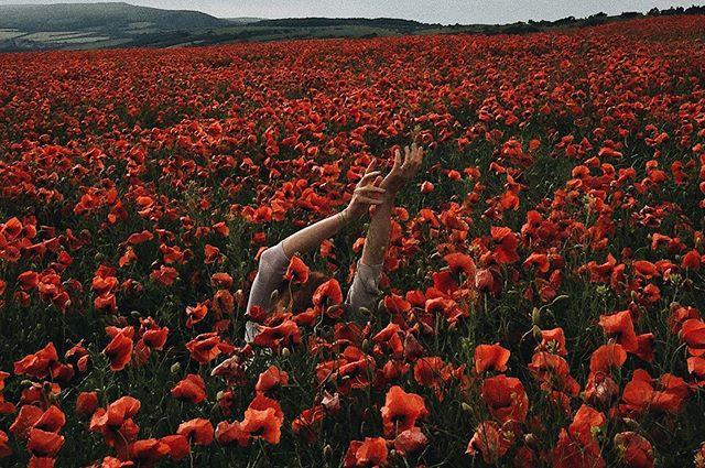 Mohnfeld ist meine Lieblingsjahreszeit.  #mood #poppy #ifeellove #poppylove #red #flowers #naturelovers #nature #naturephotography #photography #fieldoflove #mohnblume #mohn #mohnfeld #blumen