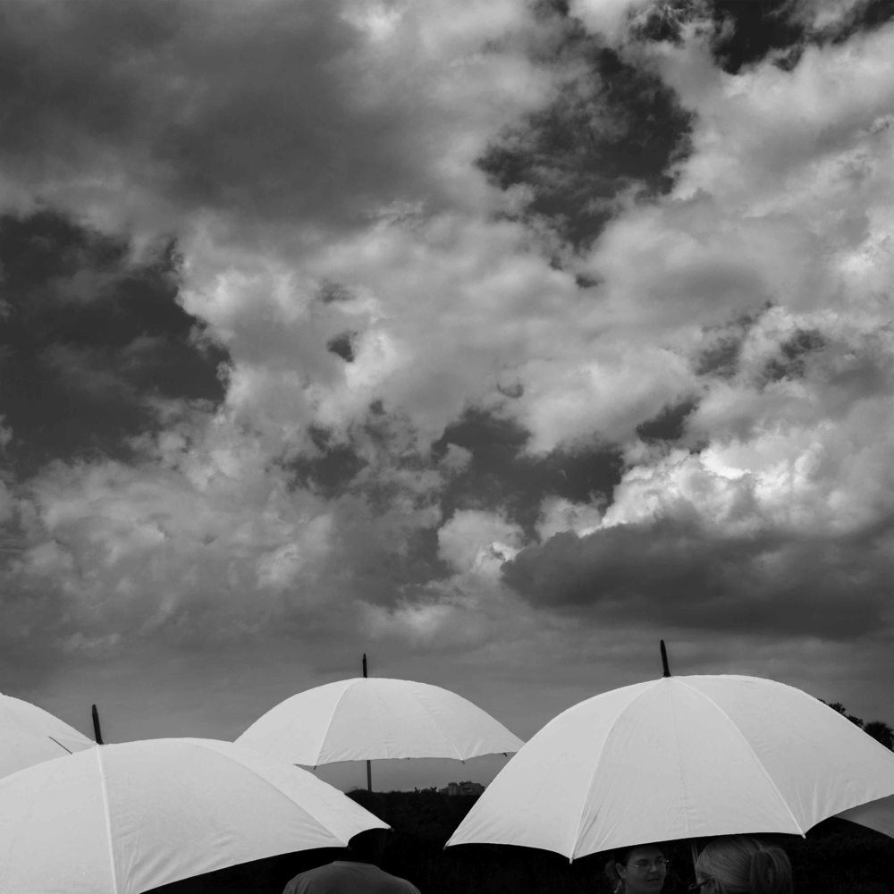 Umbrellas at Peanut Island