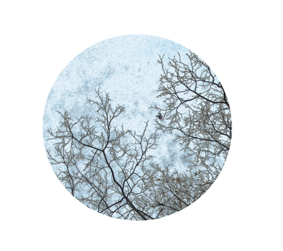 Winter Blue Sphere