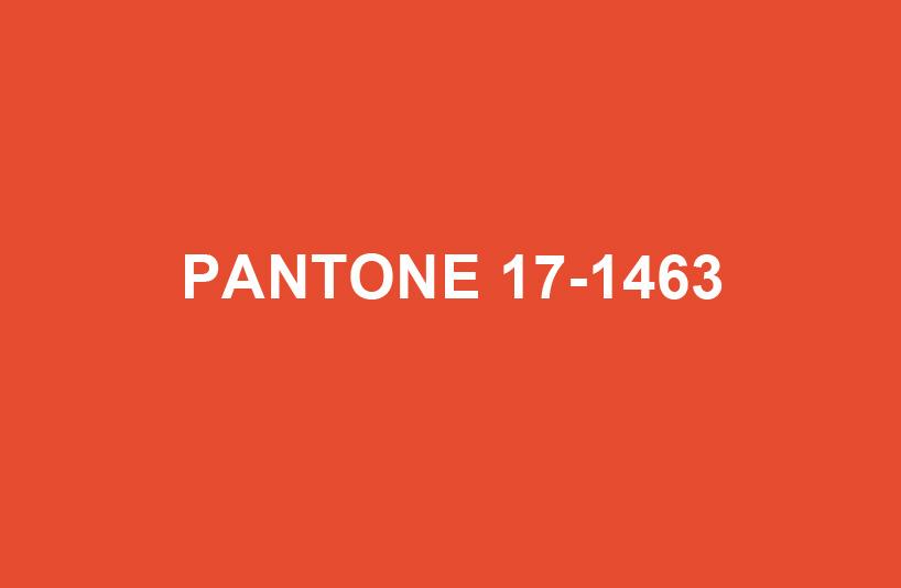 Tangerine Tango Color Of The Year 2012 Romanoff Elements