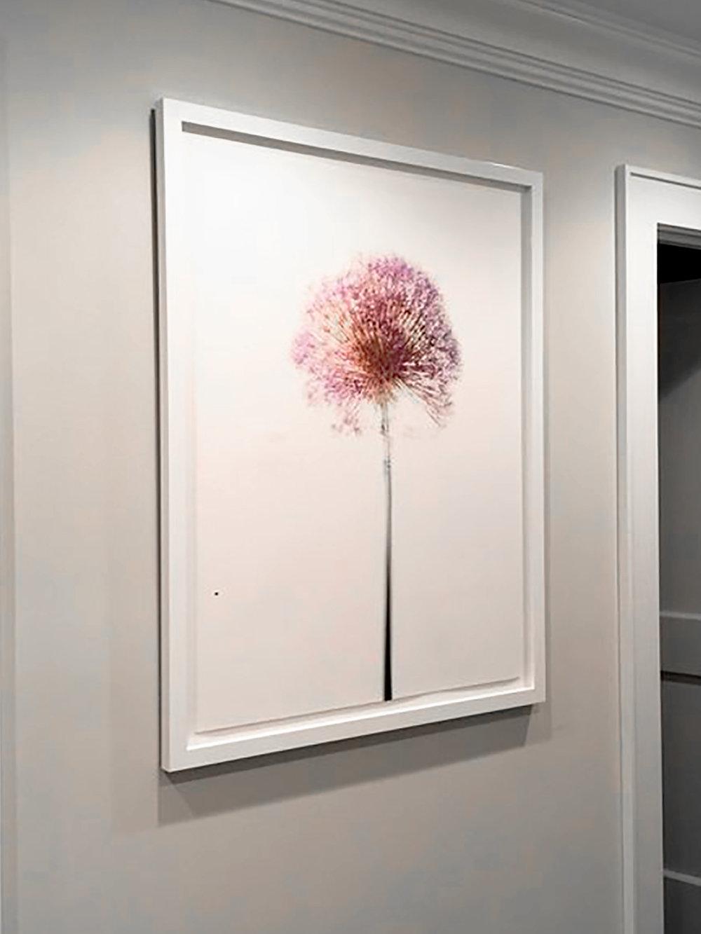 Modern Botanicals, by Shelli Breidenbach
