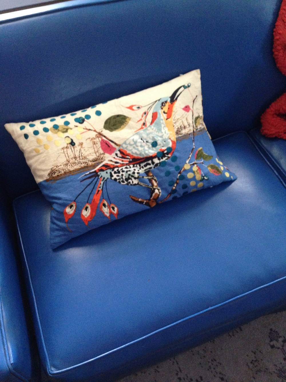 My beloved blue couch and it's feathered friend ❤️❤️❤️