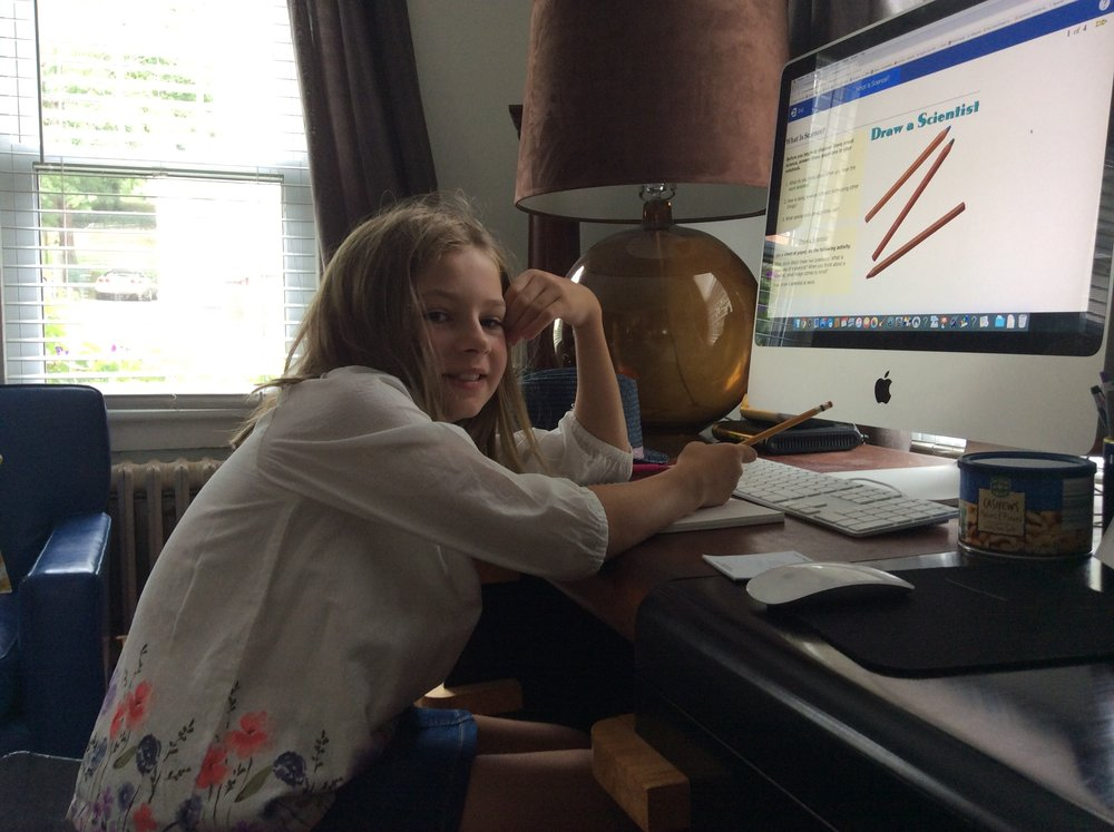 Trying online learning for the first time in our homeschool, www.Time4learning.com