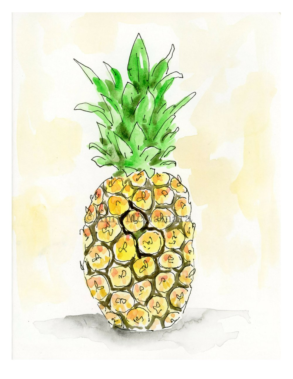 no. 146 Pineapple