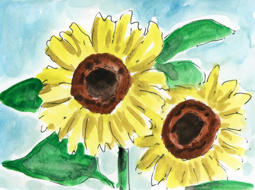 no. 237 Sunflowers