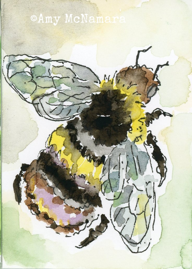 100day041.bumblebee.jpg