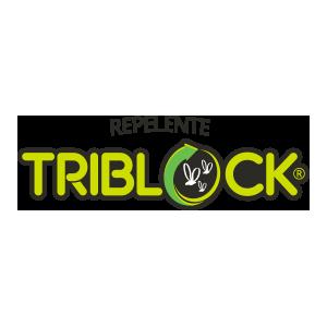 triblock.png