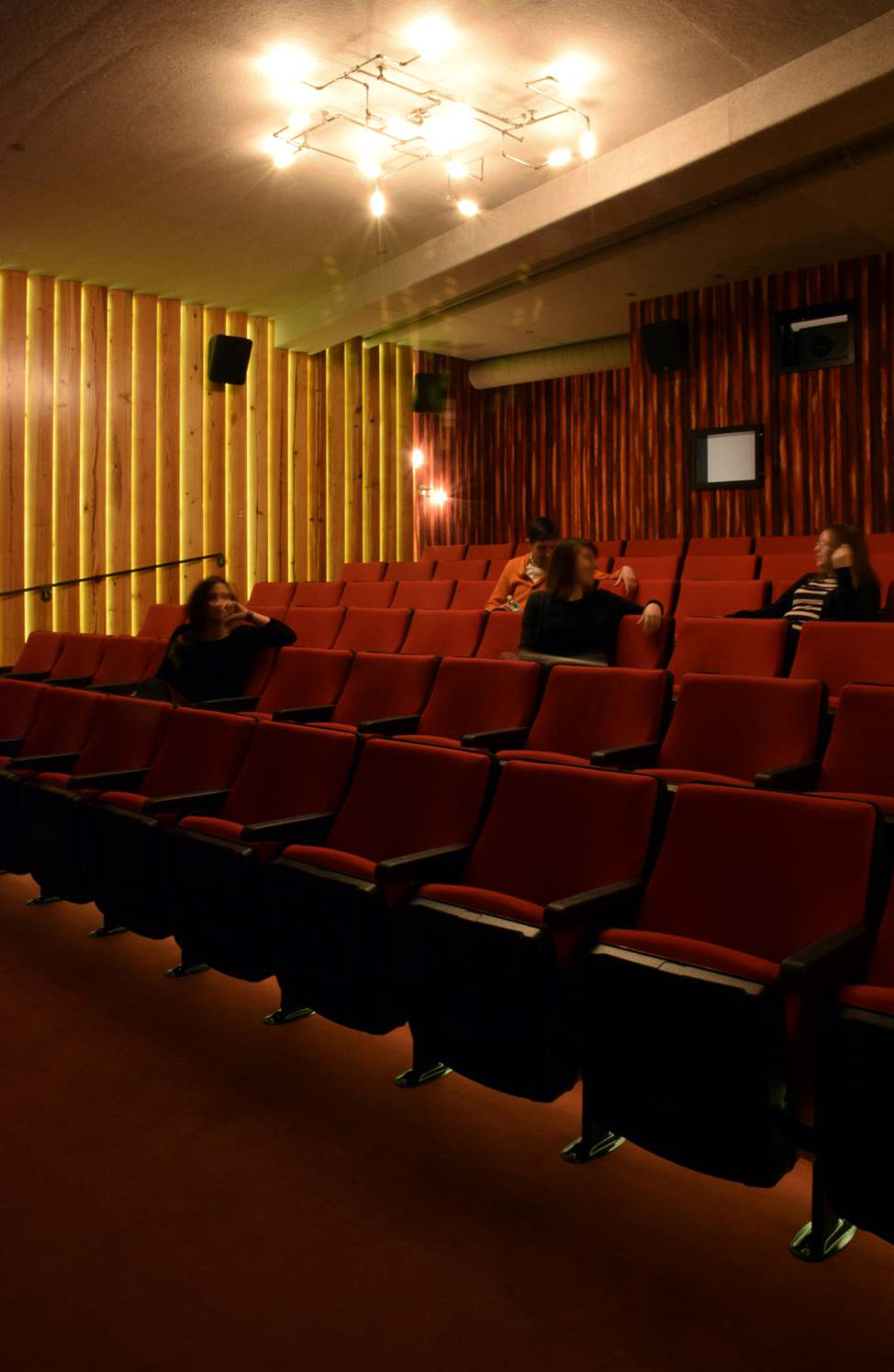 Film Theatre - Brooklyn, NY