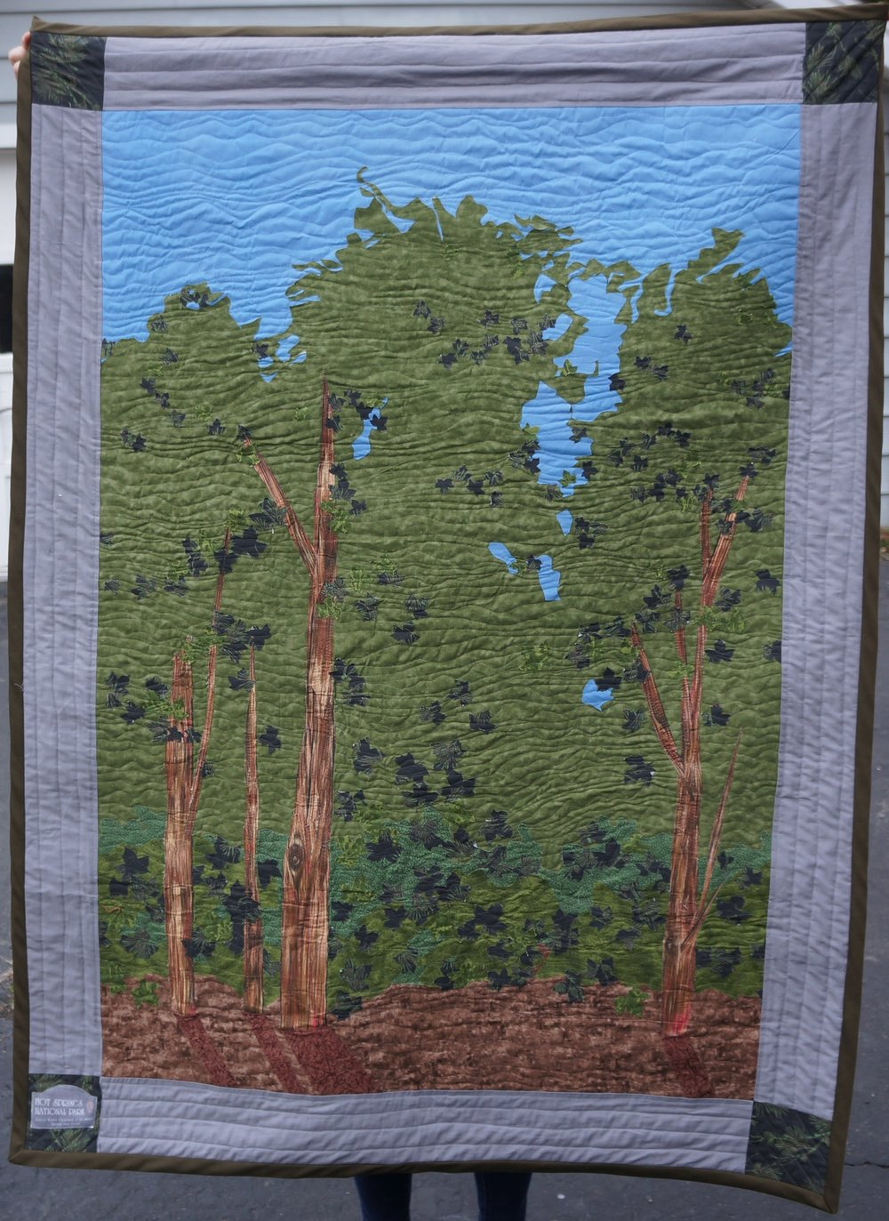 Hot Springs National Park Quilt