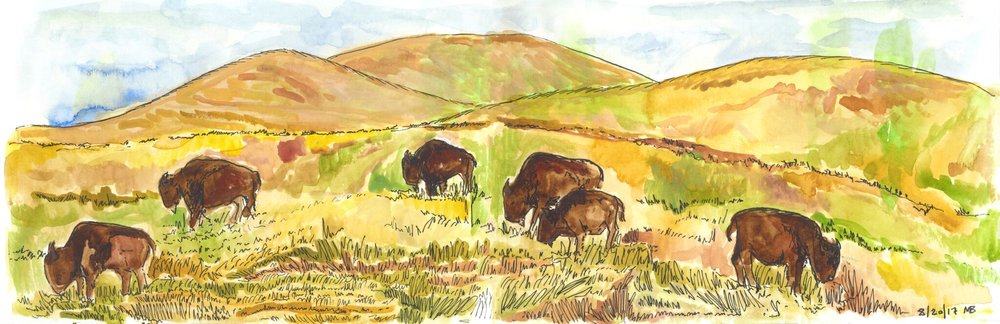 National Bison Range