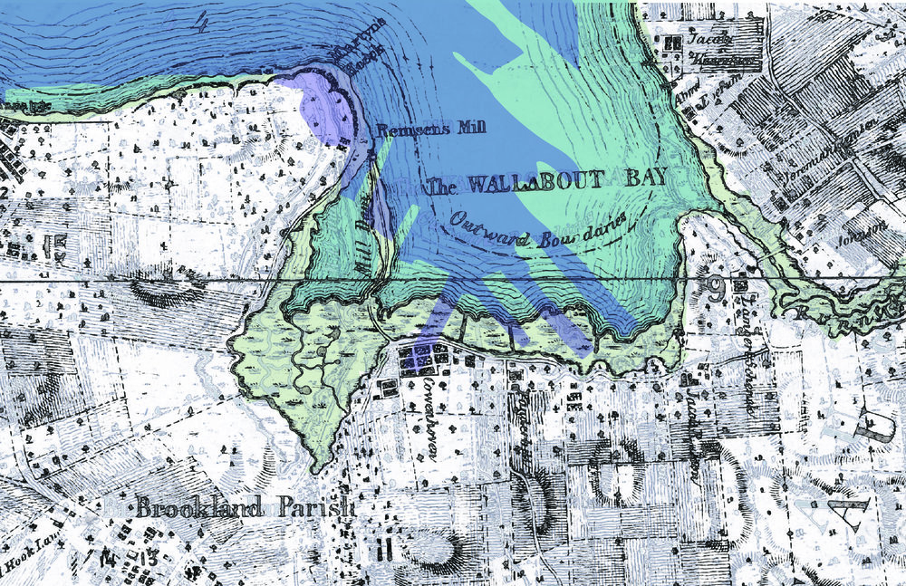 Shorelines_mapping-01.jpg