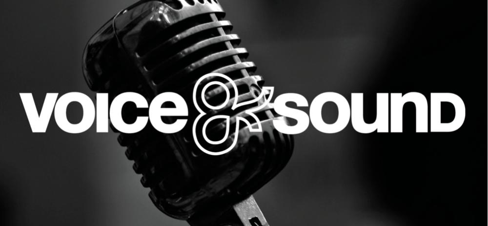 Vocal Coaching / Artist Development / Music Marketing