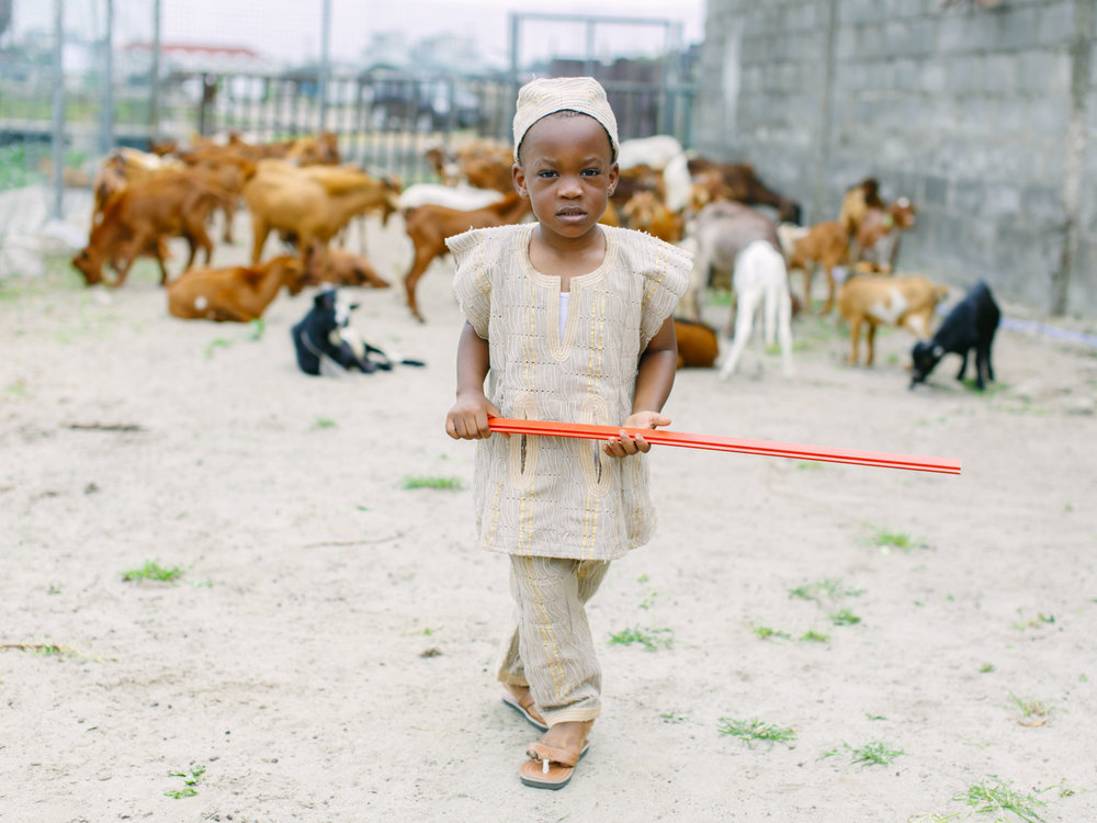 Lekki Farm-Young Farmers Project-2.jpg