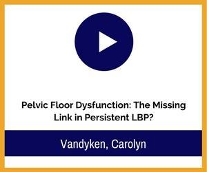 pelvic floor video