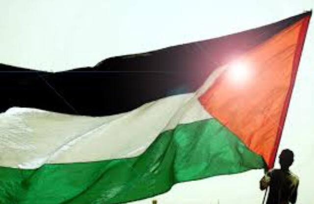 """The Palestinian flag represents me."""