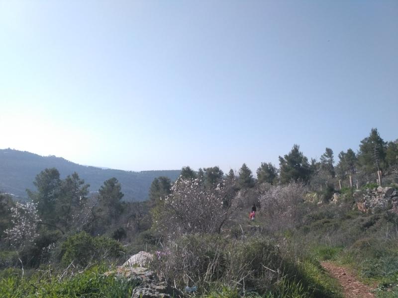 """""""Jerusalem mountain hiking"""""""