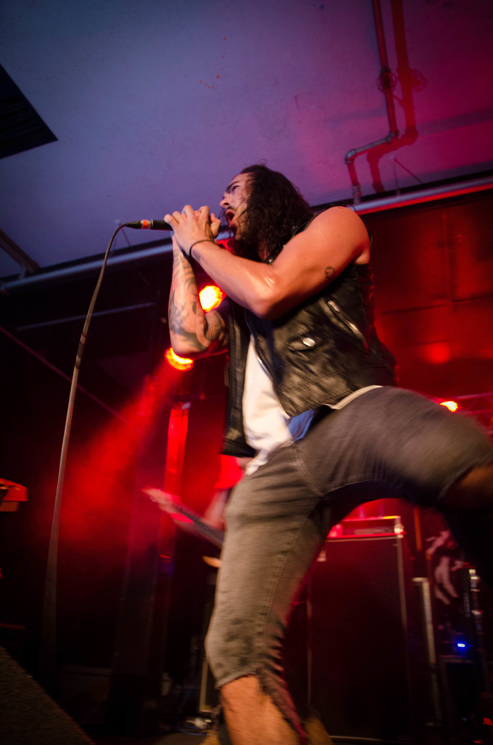 Betraying The Martyrs-29.jpg
