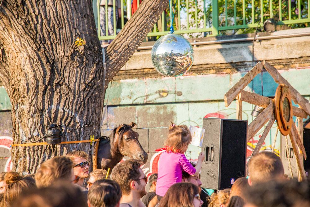 bloom party event app spontan openair berlin wien wiener frühling techno -37.jpg