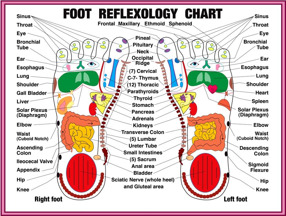 Foot Reflexology Lehua Spa