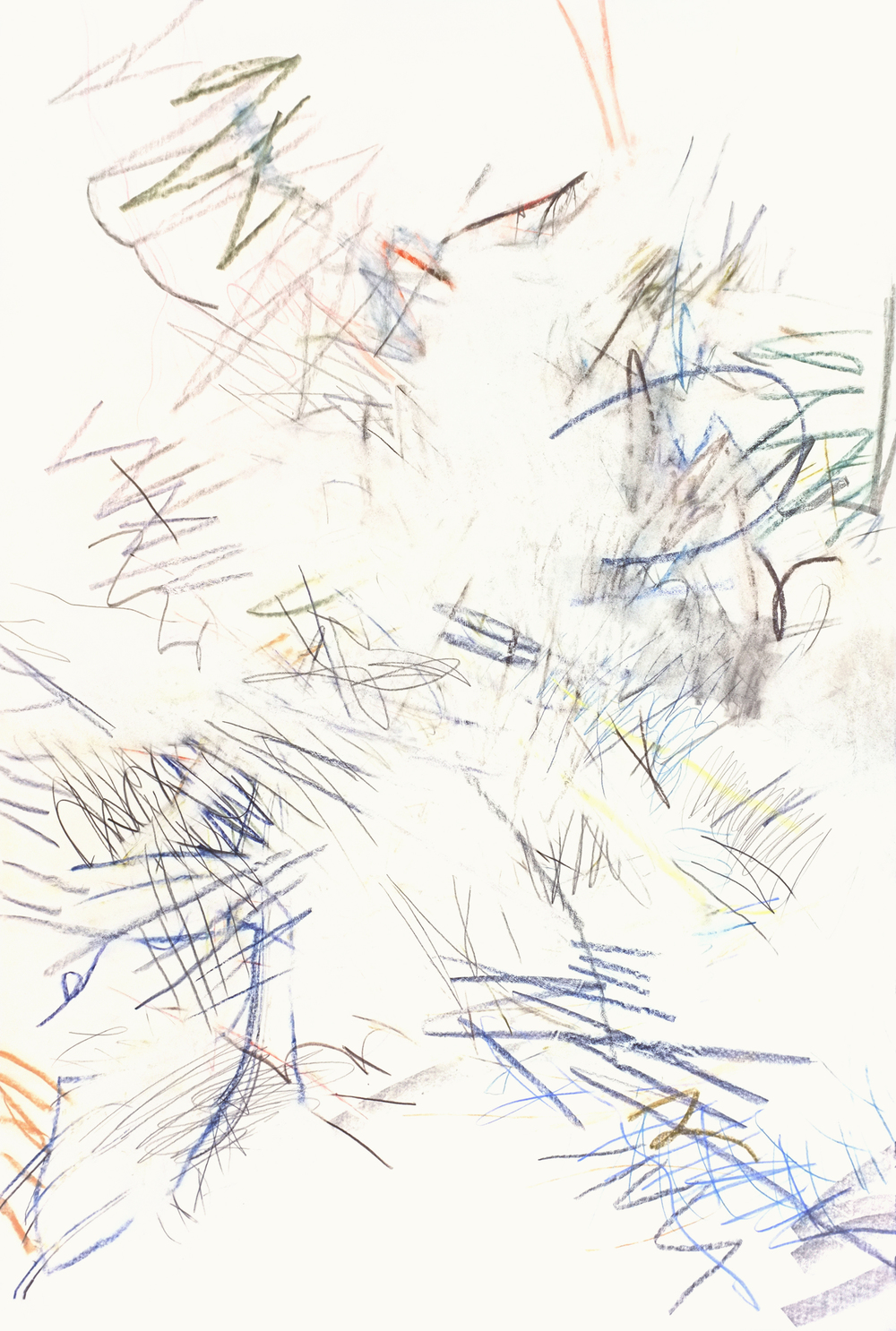 Untitled (cm.16.12), 2016 colored pencil, graphite on paper 37 13/16 x 25 5/16 inches
