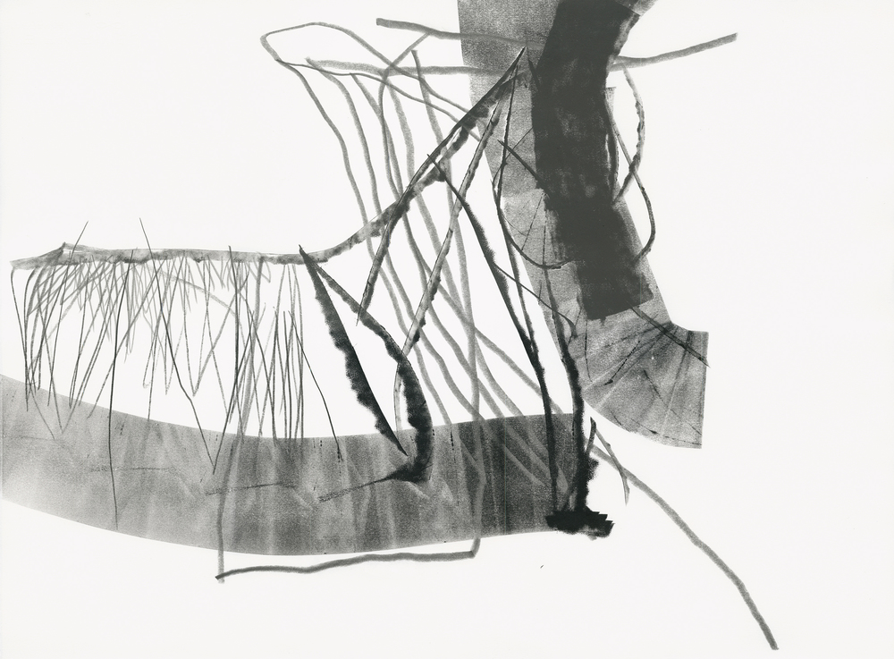 Untitled (rd.08.31), 2008 ink, charcoal, graphite on paper 22 x 30 inches