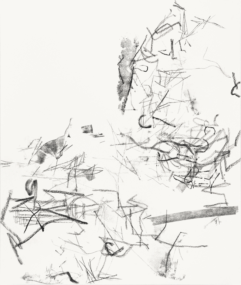 Untitled (rdl.12.6), 2012 block prining ink, charcoal on paper 50 x 42 inches