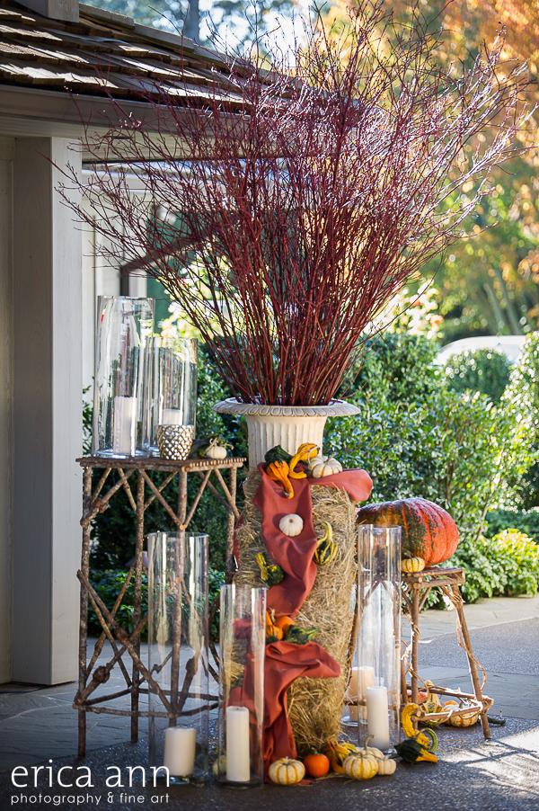 EricaAnnPhotography_GeraniumLake_Autumn-100.jpg