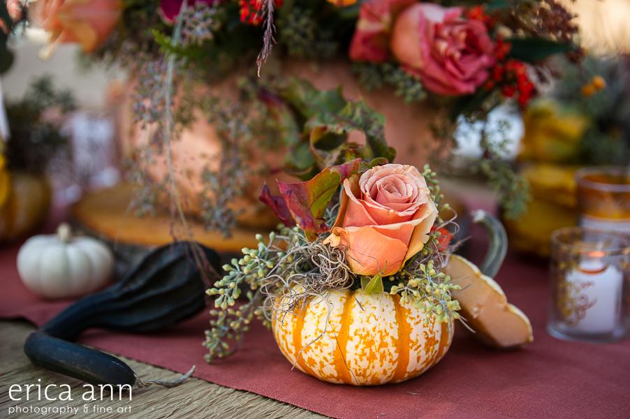 EricaAnnPhotography_GeraniumLake_Autumn-142.jpg
