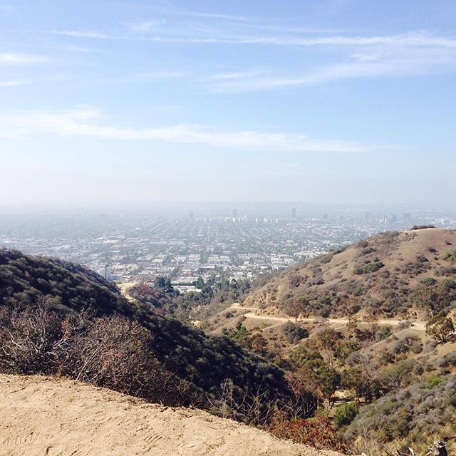 A beautiful, hazy day in Los Angeles, seen from the top of Runyon Canyon Park.