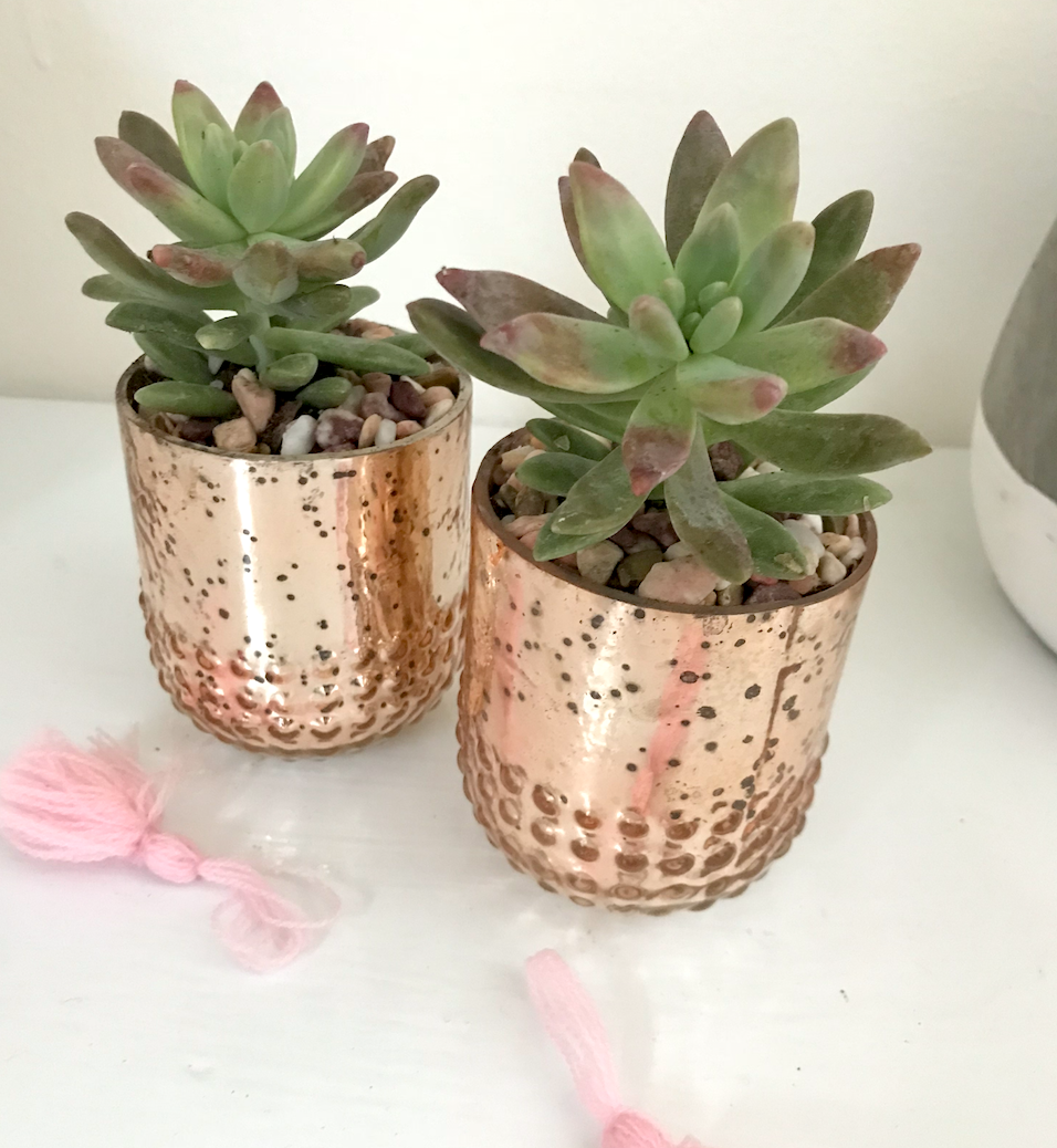 blush mercury glass with succulents