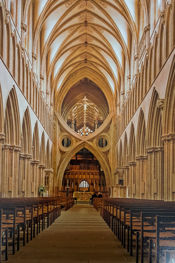 3. David Gardener - Wells Cathedral