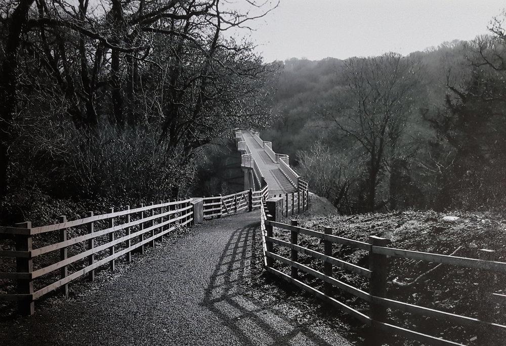 3. Daphne James - Bridging the gap