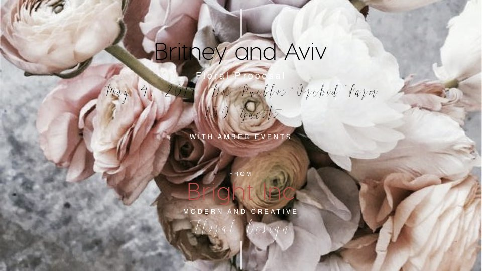 Britney and Aviv Proposal.001.jpeg