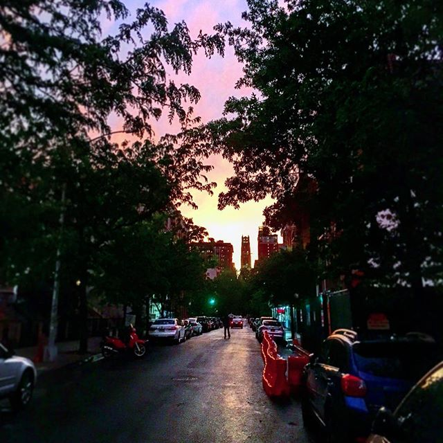 A little post-storm glow going on in #Harlem today.