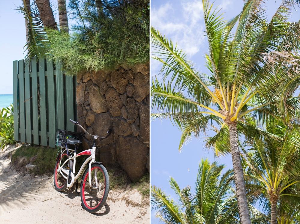 Oahu & Kauai 12.jpg