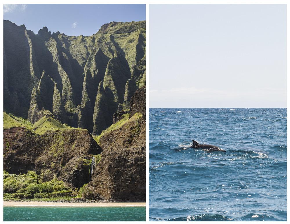 Oahu & Kauai_cwp-18.jpg