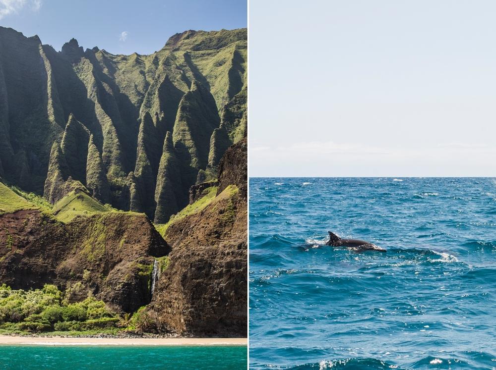 Oahu & Kauai 13.jpg