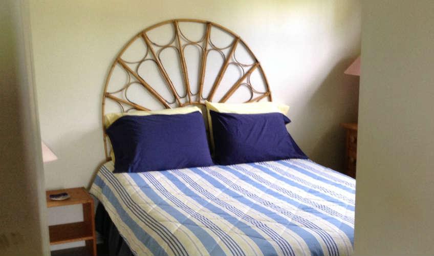 Columbine bed.jpg