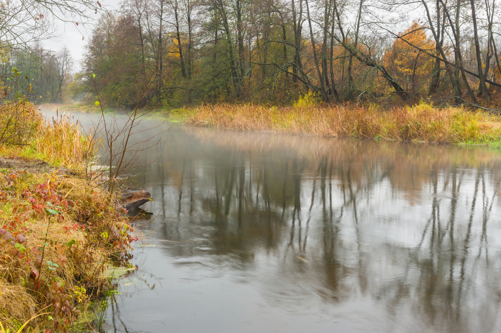 Mist on the Vorskla River near Poltava